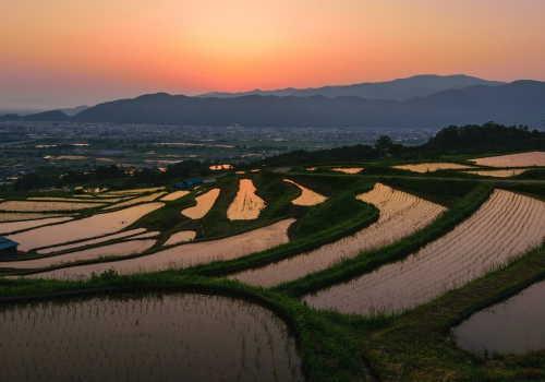 中分類01 農業イメージ画像2