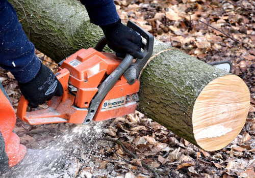 伐木等業務従事者特別教育イメージ