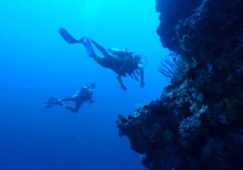 潜水士のイメージ画像