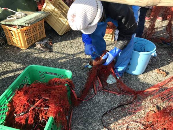 職業分類漁業の漁風景
